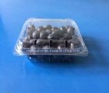 Blueberry Packaging Container Fruit Packaging Box Plsastic Blueberry Packaging Punnet 125 Grams