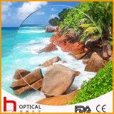 1.499 Single Vision 65mm Optical Lens UC