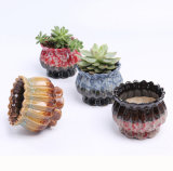 Gardening Mini Ceramic Flower Pot Vase