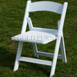 Outdoor Garden Design Dining Plastic Folding Chair Price (SZ-FCT001)