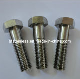 Nut (2.4819 Nuts / C276 Nuts / N10276 Nuts / Hastelloy Nut)