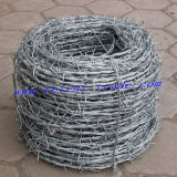 Hot Dipped Galvanized Barbed Wire/PVC Coated Barbed Wire Bwg 14X16
