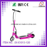 Electric Scooter (SX-E1013-120)