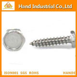 Ss DIN7976 Fastener Hex Head Tapping Screw