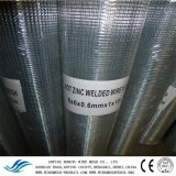 Galvanized Welded Wire Mesh After Welding