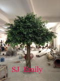 Sj 2013 Hot Sales Artificial Banyan Tree