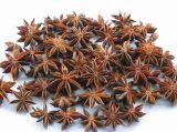 New Crop Exporting Star Aniseed
