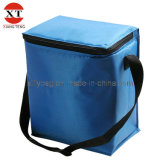 Picnic Cooler Bag Lunch Bag for Food (XTFLY76)