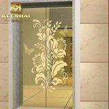PVD Color Coated Decorative Stainless Steel Elevator Door