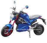 China Quality 1500W 2000W Racing Adult Electric Motorcycle for Sale
