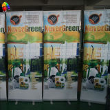 Roll up Banner Stand with Carrying Package (Roll-01)