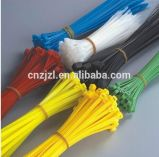 Resour Nylon Cable Tie in High Quality, Self Locking Cable Tie, Nylon66 Cable Tie, Colourful