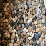 Mixed Polished River Pebbles Decoration