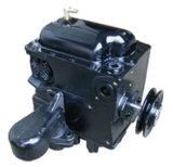Rt-Cp2b (Tokheim type) Pump
