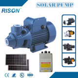 Quality DC Surface Solar Pump (5 Years Warranty)