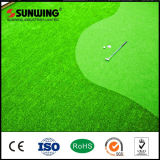 Plastic Green Artificial Grass Carpet for Golf