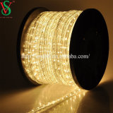 24V Warmwhtie Color LED Rope Light for Xmas Decoration