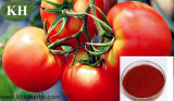 Antioxidant Lycopene Powder 6% Tomato Extract