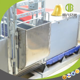 Thickening Tall Back Stainless Steel Trough for Sow