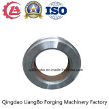 Steam Turbine Center Ring with ISO9001