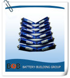 LiFePO4 Battery, 38120s 10ah 10c Battery