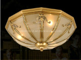 2014 Brass Ceiling Lamp (SL82010-3)