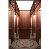 Luxury Passenger Elevator with Machine Room Less (S700L-H)