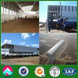 Steel Structure Workshop Building Construction (XGZ-SSB152)
