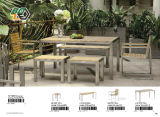 Patio Outdoor Furniture Metal Stainless Steel Polywood Table Set (BZ-N004)