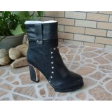 New Style Ankle High Heel Women Dress Boots (HCY02-790)