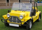 2-4 Seats Gasoline Mini Moke Car