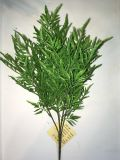 PE Ming Aralia Artificial Plant for Home Decoration with SGS Certificate