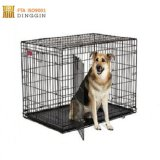 Stainless Dog Cage in Outdoor