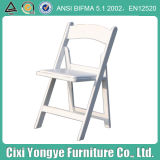 Commercial Seating Resin Folding Chair for Events