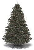 7.5' Prelited Bellington Fir Tree (SKCT-0003L)