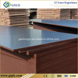 18mm Construction Marine Plywood for Building