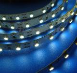 IP65 Waterproof LED Strip Light with 1year Warranty