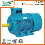 Y2 Three Phase Induction Motor 275kw (Y2 series)