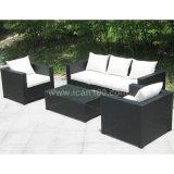 Garden Leisure Rattan Sofa Furniture (WS-06020)