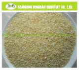 Diced Dried Garlic Garlic Granule Dehydrated Garlic Granule