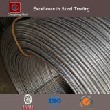 HRB400 Deformed Steel Rebar with Coil (CZ-R31)