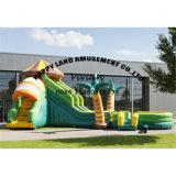 Skillful Printing Inflatable Slide with Pool