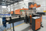 Full-Automatic Wsp-10 Film Shrink Wrapping Packaging Machine