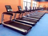 Easy Control Key Panel Commercial Treadmill for Gym Trainer