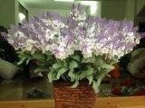 Artificial Flowers of Violet 33cm Light Blue