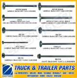Over 150 Items Transmission Parts for Rear Axle Shaft