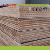 Hardwood Core Birch Cheap Film Faced Plywood