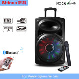 12 Inch New Product Professional Bluetooth Large Outdoor Speaker