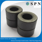Customized Ferrite Magnet for Steping Motor with Sintered Process