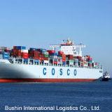 Best Ocean Container Shipping Service to South America (SAN SALVADOR/SAN PEDRO SULA/SANTA MARTA/SANTIAGO/SANTO DOMINGO)